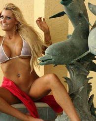 Ember Playing With Dolphins